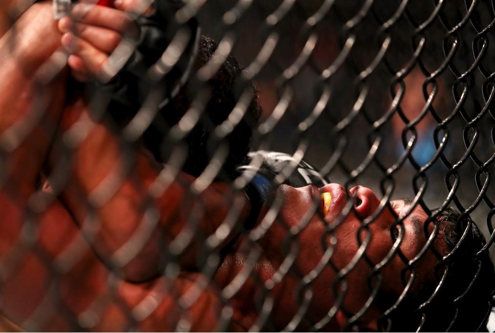 UFC Fight Night Werdum v Tybura