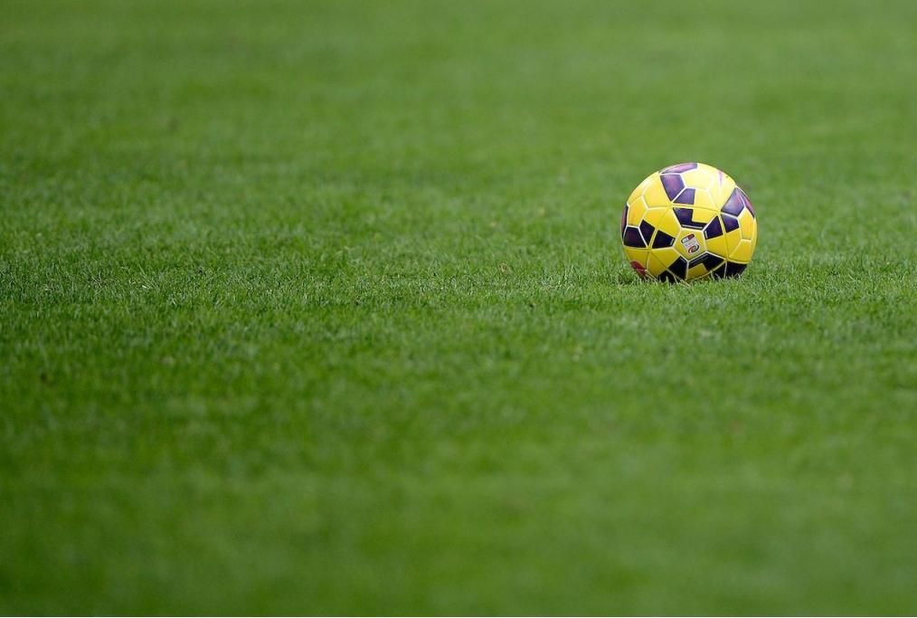 Pallone calcioMilano 11-01-2015 Stadio G
