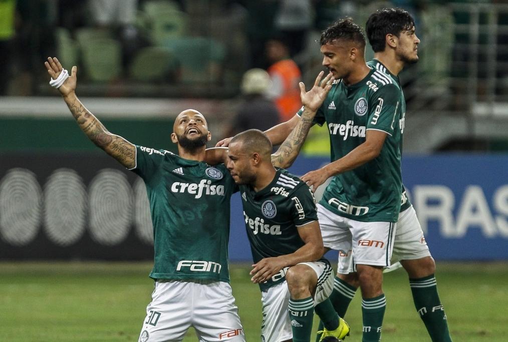 Palmeiras v Fluminense - Brasileirao Ser